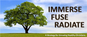 Immerse Fuse Radiate